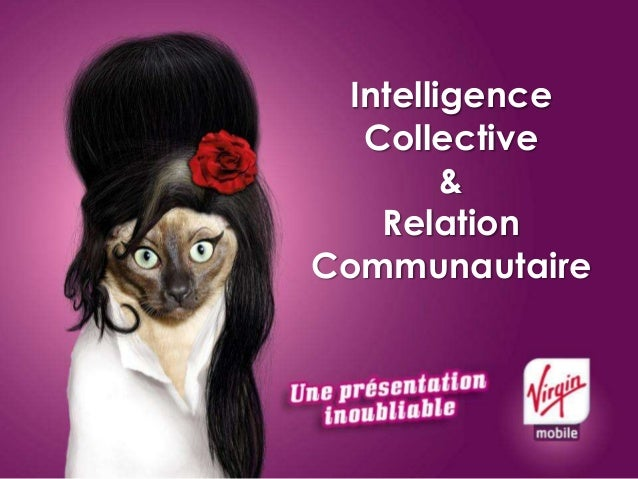 Intelligence Collective & Relation Communautaire