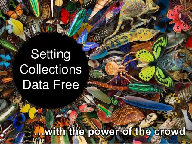 Setting Collections Data Free …with the power of the crowd