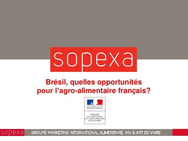 Brésil, quelles opportunitéspour l'agro-alimentaire français?