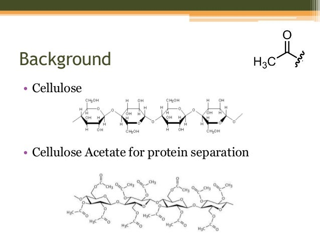 How is galp used to synthesise cellulose
