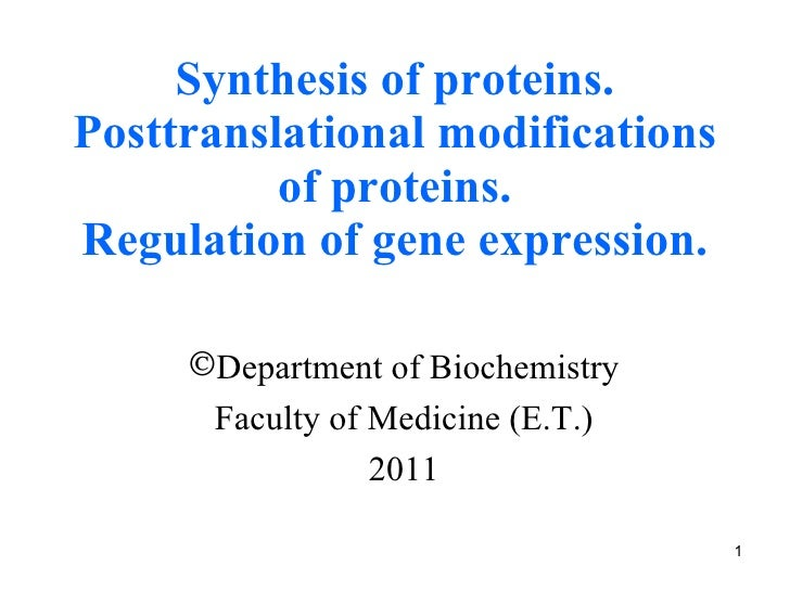 Synthesis of proteins. Posttranslational modifications of proteins. Regulation of gene expression. <ul><li>Department of B...