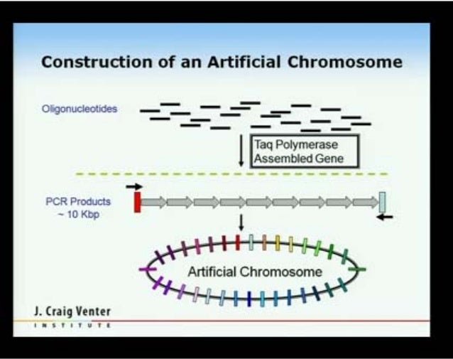 the synthetic lifeforms artificial life Dr craig venter, who has been working on synthetic life for a decade, told the new york times: it is our final triumph artificial life presents risk of bioterrorism jim thomas, a member of the etc group: we know that lab-created life-forms can escape and become biological weapons, and that their use.