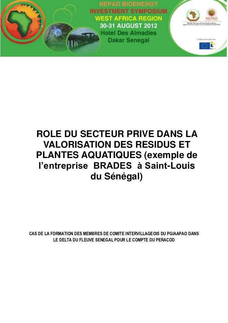 ROLE DU SECTEUR PRIVE DANS LA     VALORISATION DES RESIDUS ET   PLANTES AQUATIQUES (exemple de   l'entreprise BRADES à Sai...