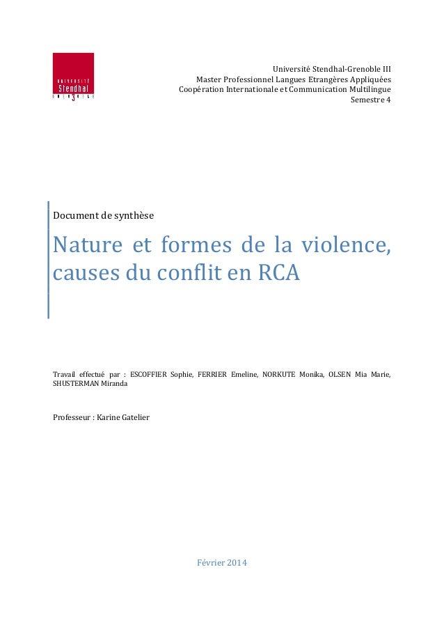 Université Stendhal-Grenoble III Master Professionnel Langues Etrangères Appliquées Coopération Internationale et Communic...