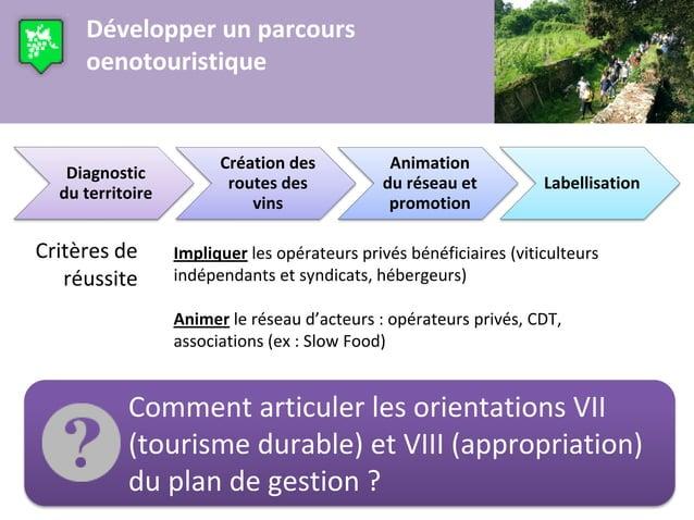 Développer un parcours     oenotouristique                        Création des            Animation   Diagnostic          ...