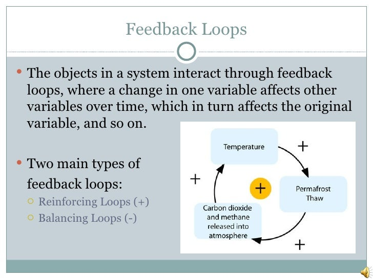 Feedback Loops <ul><li>The objects in a system interact through feedback loops, where a change in one variable affects oth...