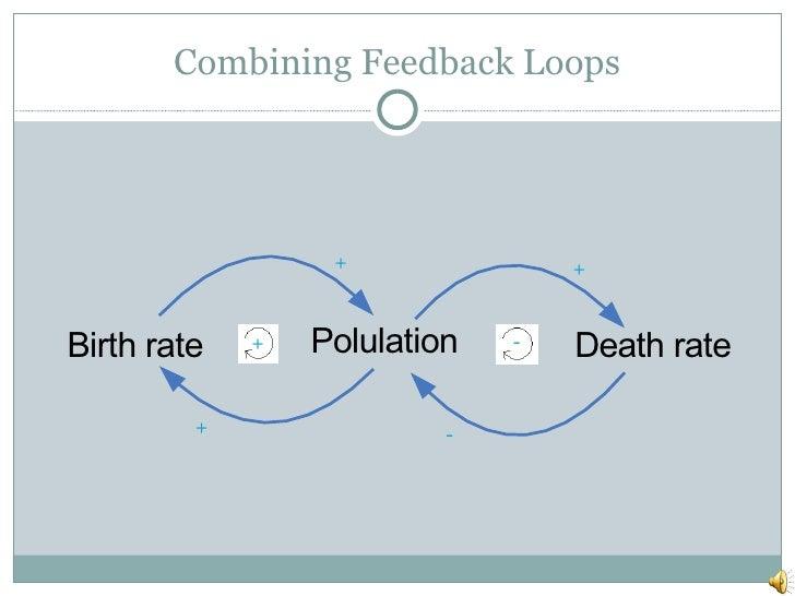 Combining Feedback Loops + + + - - +