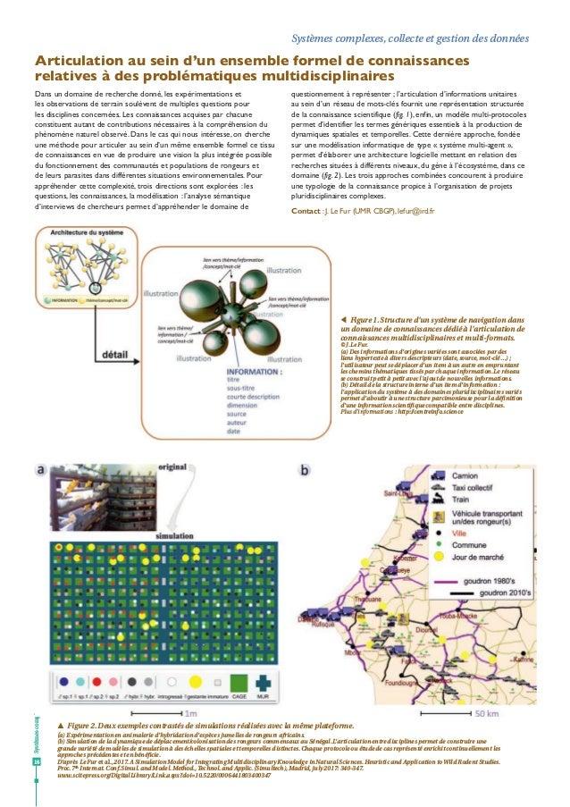 Systèmescomplexes 16 Systèmes complexes, collecte et gestion des données Articulation au sein d'un ensemble formel de conn...