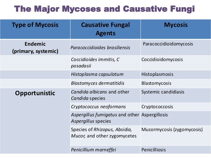 The Major Mycoses and Causative FungiType of Mycosis            Causative Fungal                       Mycosis            ...