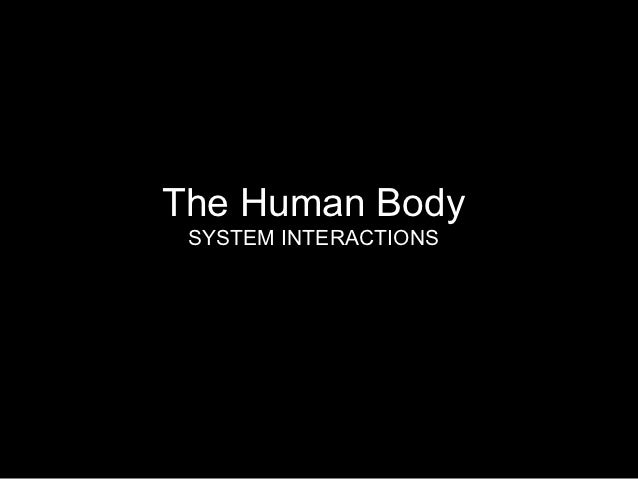 The Human Body SYSTEM INTERACTIONS