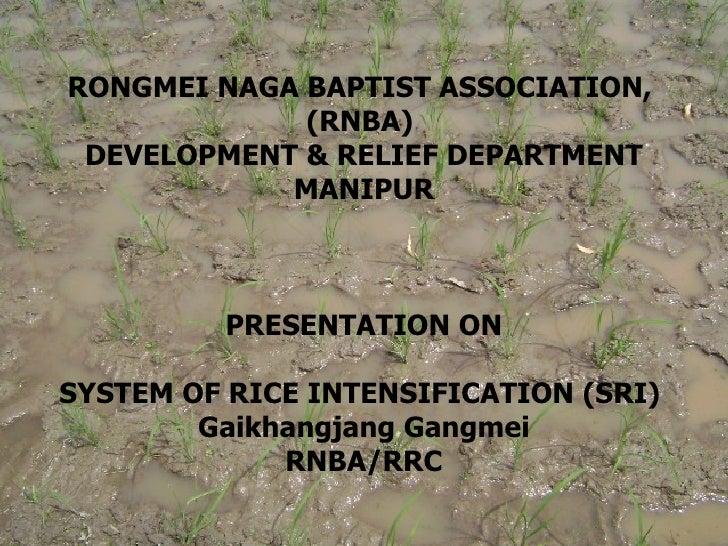 RONGMEI NAGA BAPTIST ASSOCIATION,             (RNBA) DEVELOPMENT & RELIEF DEPARTMENT            MANIPUR         PRESENTATI...