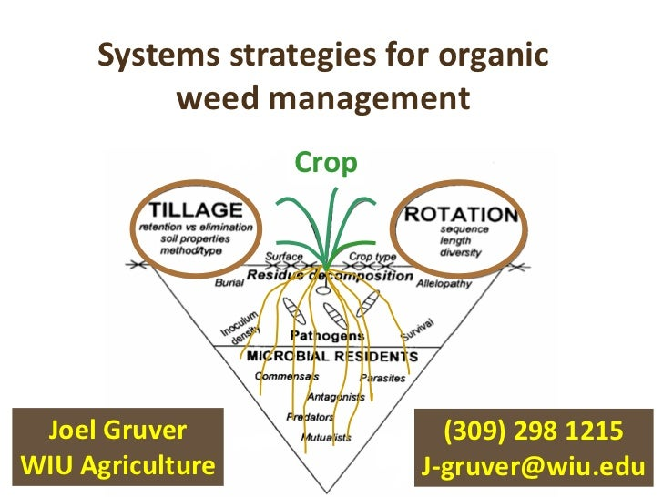 Systems strategies for organic          weed management                  Crop Joel Gruver                (309) 298 1215WIU...
