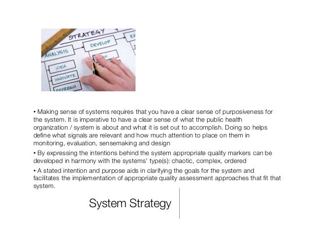 System Strategy •Making sense of systems requires that you have a clear sense of purposiveness for the system. It is impe...