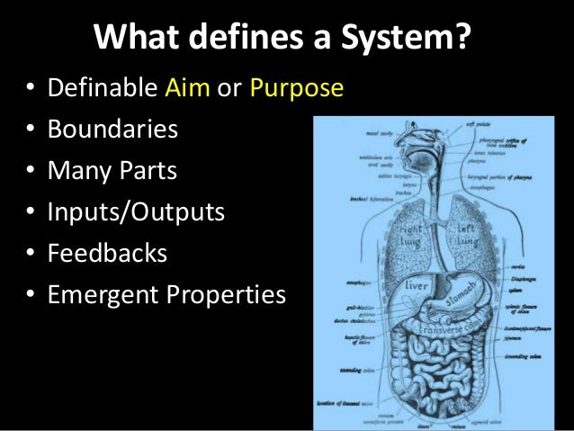 What defines a System? • Definable Aim or Purpose • Boundaries • Many Parts • Inputs/Outputs • Feedbacks • Emergent Proper...