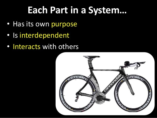 Each Part in a System… • Has its own purpose • Is interdependent • Interacts with others