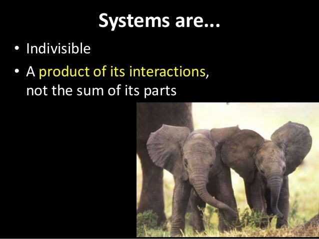 Systems are... • Indivisible • A product of its interactions, not the sum of its parts