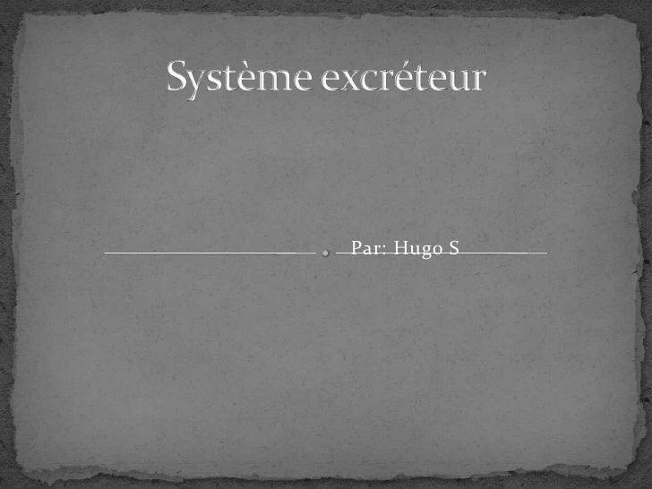 Système excréteur<br />Par: Hugo S<br />