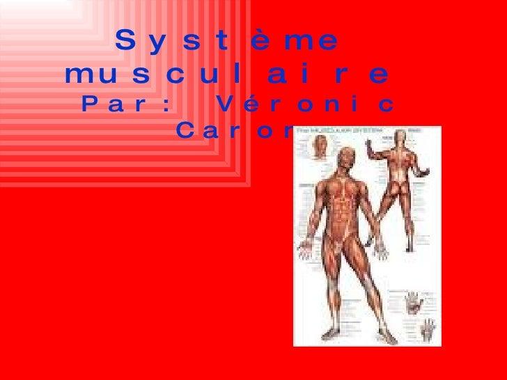 Système musculaire Par: Véronic Caron