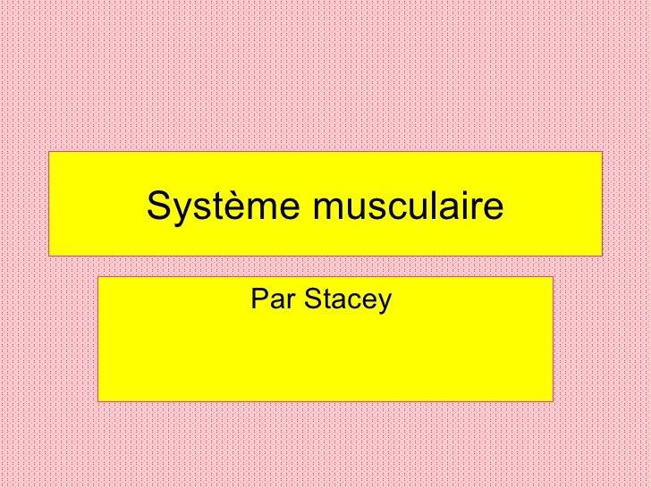 Système musculaire Par Stacey