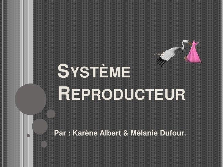 Système Reproducteur <br />Par : Karène Albert & Mélanie Dufour. <br />