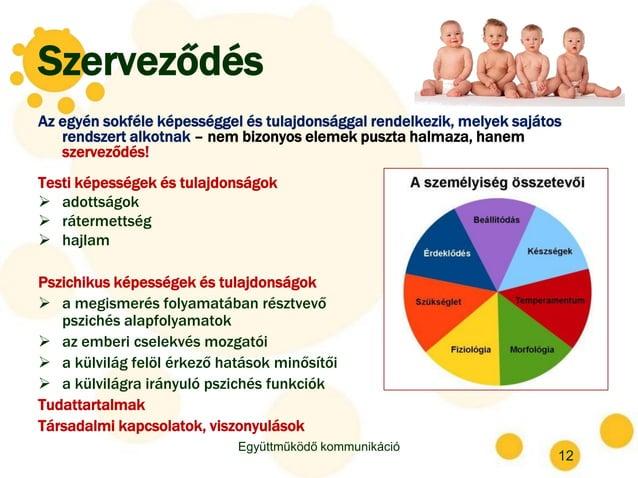 Szerveződés Az egyén sokféle képességgel és tulajdonsággal rendelkezik, melyek sajátos rendszert alkotnak – nem bizonyos e...