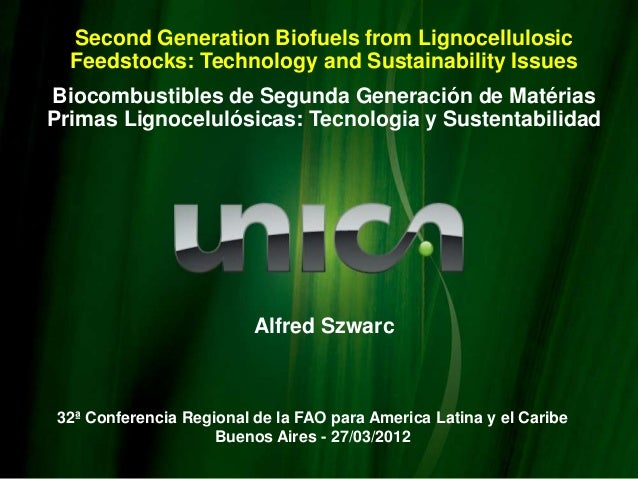 Second Generation Biofuels from Lignocellulosic  Feedstocks: Technology and Sustainability IssuesBiocombustibles de Segund...