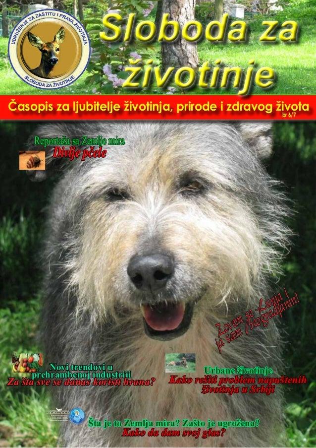 Časopis za ljubitelje životinja, prirode i zdravog života Urbane životinje Kako rešiti problem napuštenih životinja u Srbi...