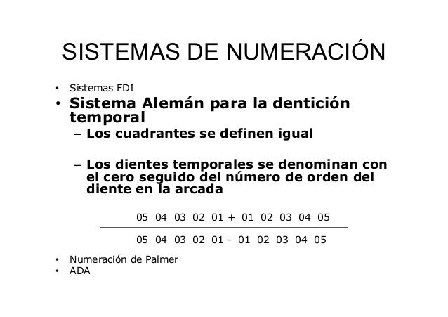 Nomenclatura dentales y description general de los dientes for Numero de dientes