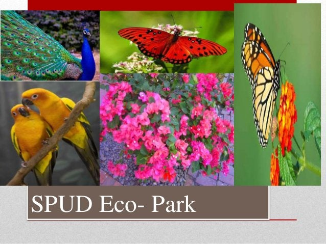 SPUD Eco- Park
