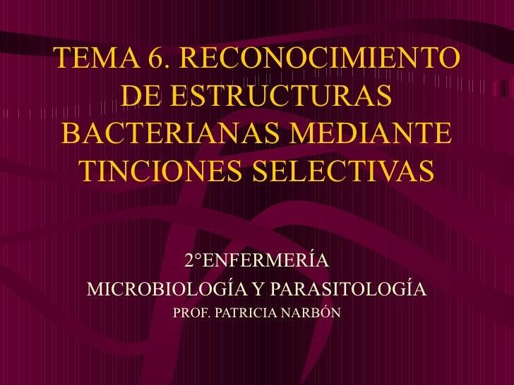 TEMA 6. RECONOCIMIENTO    DE ESTRUCTURASBACTERIANAS MEDIANTE TINCIONES SELECTIVAS         2°ENFERMERÍA MICROBIOLOGÍA Y PAR...
