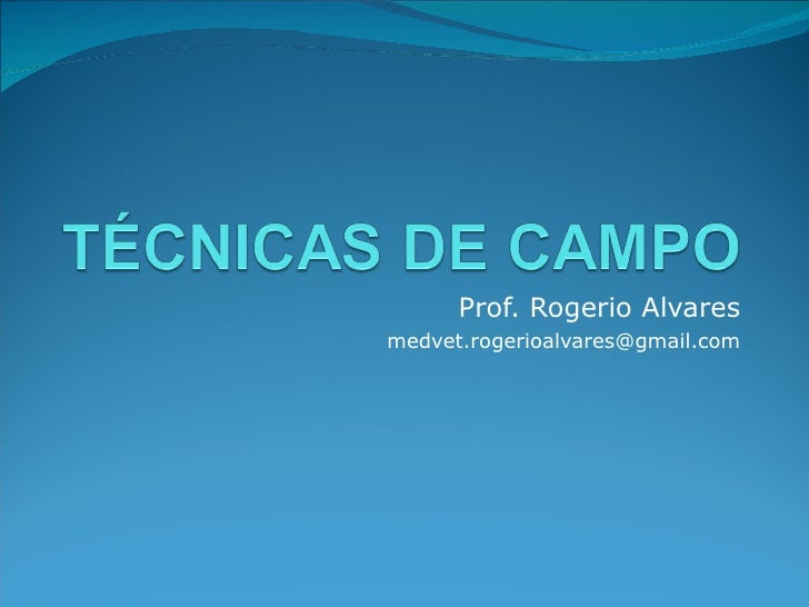 Prof. Rogerio Alvares [email_address]