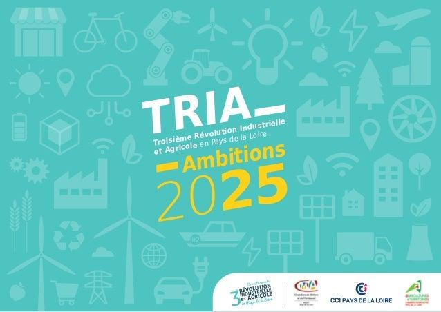 VISION 2025 DETRIA Ambitions Troisième Révolution Industrielle et Agricole en Pays de la Loire 2025