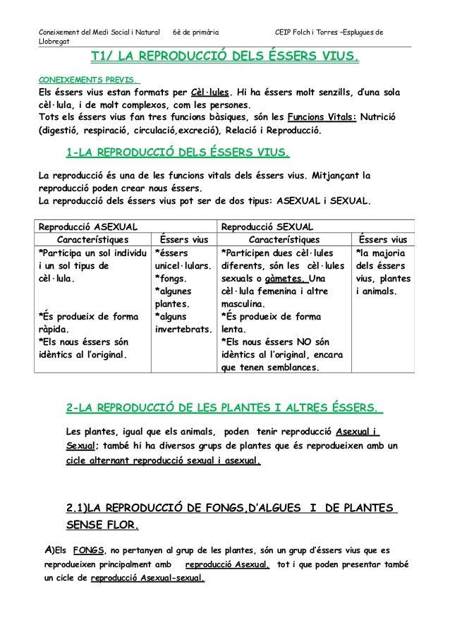 Coneixement del Medi Social i Natural 6è de primària CEIP Folch i Torres –Esplugues de  Llobregat  T1/ LA REPRODUCCIÓ DELS...