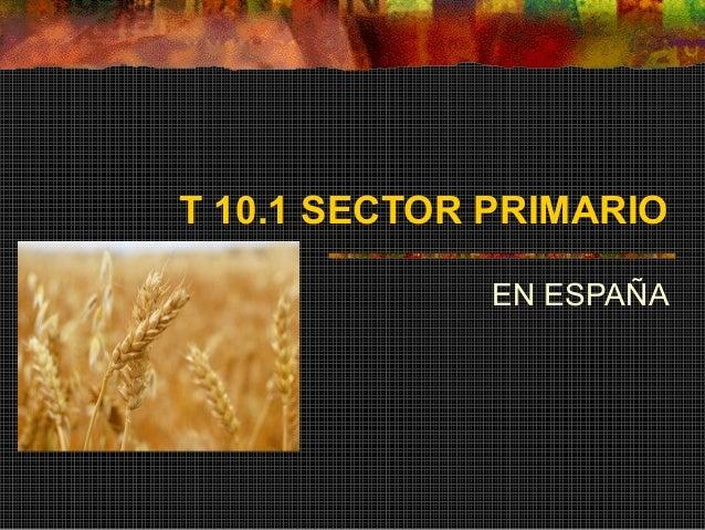T 10.1 SECTOR PRIMARIO EN ESPAÑA