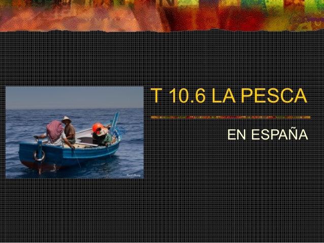 T 10.6 LA PESCA EN ESPAÑA