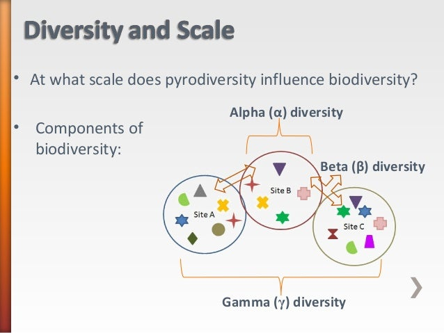 components of biodiversity Sustainable use means the use of components of biological diversity in a way and at a rate that does not lead to the long-term decline of biological diversity, thereby maintaining its potential to meet the needs and aspirations of present and future generations.