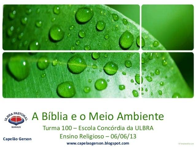 A Bíblia e o Meio AmbienteTurma 100 – Escola Concórdia da ULBRAEnsino Religioso – 06/06/13Capelão Gersonwww.capelaogerson....