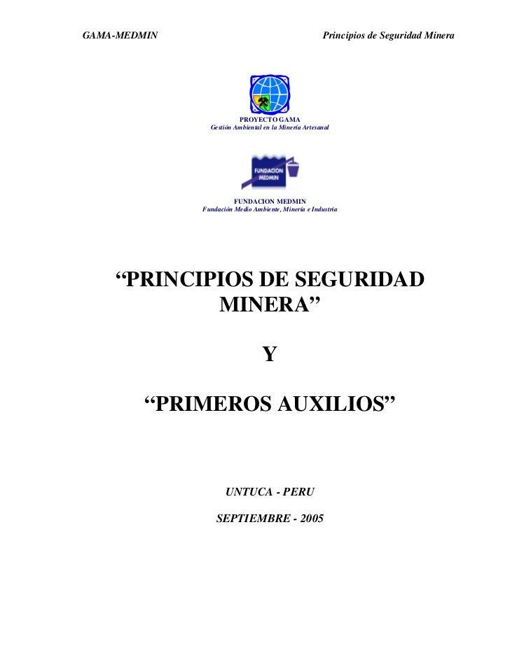 GAMA-MEDMIN                                           Principios de Seguridad Minera                         PROYECTO GAMA...