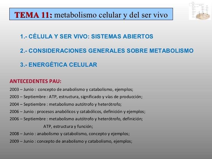 TEMA 11:  metabolismo celular y del ser vivo 1.- CÉLULA Y SER VIVO: SISTEMAS ABIERTOS 2.- CONSIDERACIONES GENERALES SOBRE ...