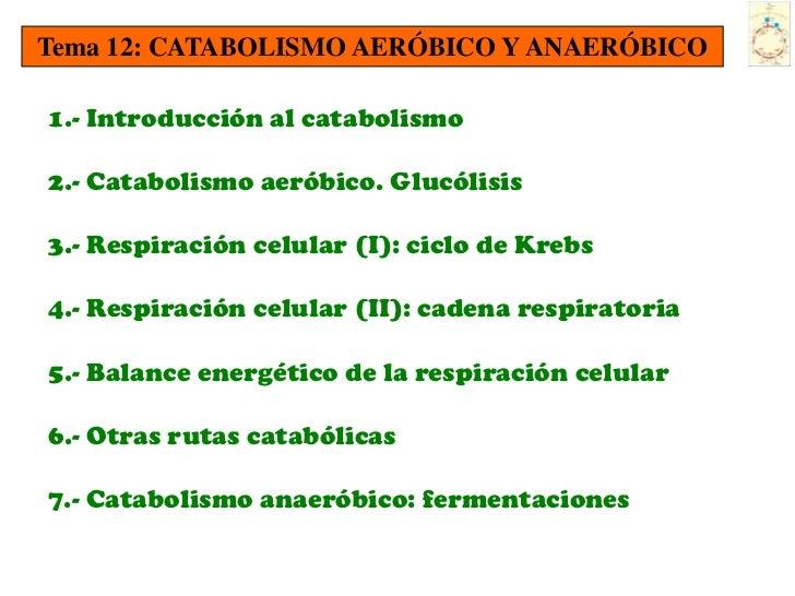 Tema 12: CATABOLISMO AERÓBICO Y ANAERÓBICO1.- Introducción al catabolismo2.- Catabolismo aeróbico. Glucólisis3.- Respiraci...