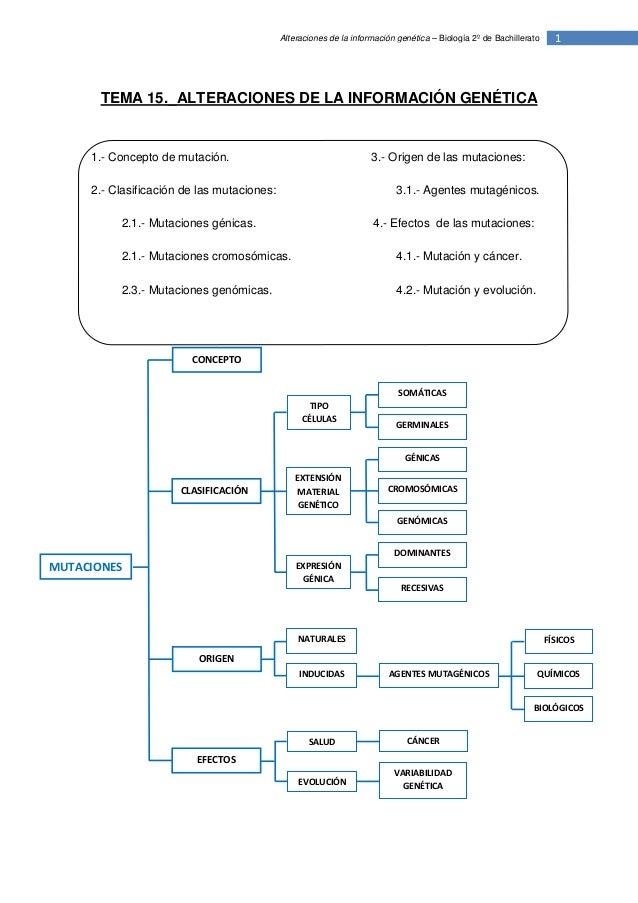 Alteraciones de la información genética – Biología 2º de Bachillerato     1       TEMA 15._ALTERACIONES DE LA INFORMACIÓN ...