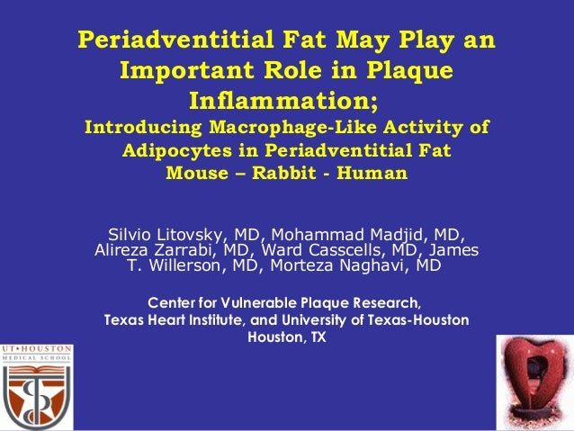 Periadventitial Fat May Play an Important Role in Plaque Inflammation; Introducing Macrophage-Like Activity of Adipocytes ...