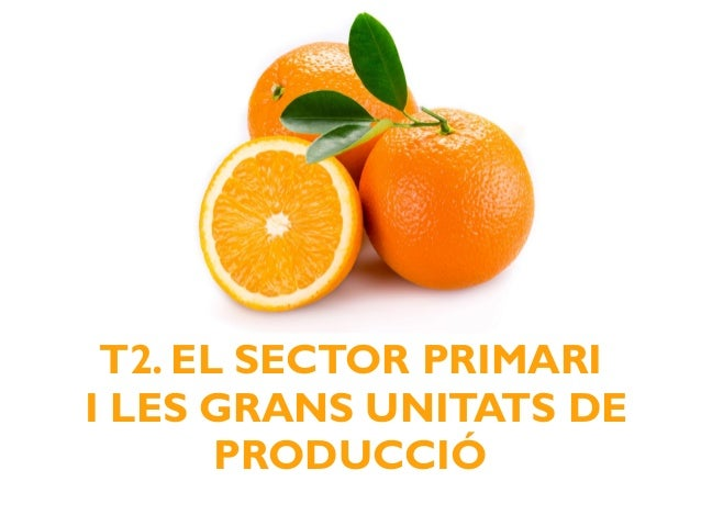 T2. EL SECTOR PRIMARI I LES GRANS UNITATS DE PRODUCCIÓ