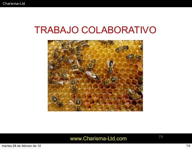 #Charisma-Ltd www.Charisma-Ltd.com 79 TRABAJO COLABORATIVO 79martes 28 de febrero de 12
