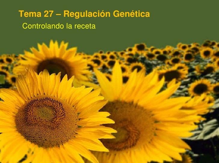 Tema 27 – Regulación Genética<br />Controlando la receta<br />