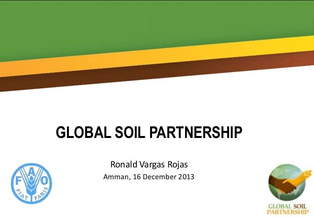 GLOBAL SOIL PARTNERSHIP Ronald Vargas Rojas Amman, 16 December 2013