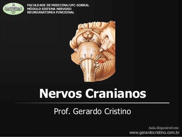 Nervos Cranianos Prof. Gerardo Cristino Aula disponível em: www.gerardocristino.com.br FACULDADE DE MEDICINA/UFC-SOBRAL MÓ...