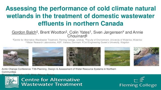 Assessing the performance of cold climate natural wetlands in the treatment of domestic wastewater effluents in northern C...