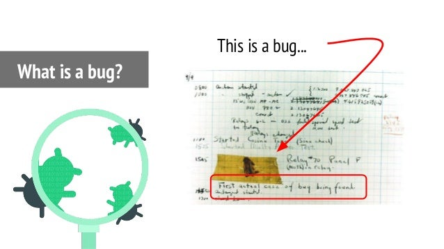 What is a bug? This is a bug...