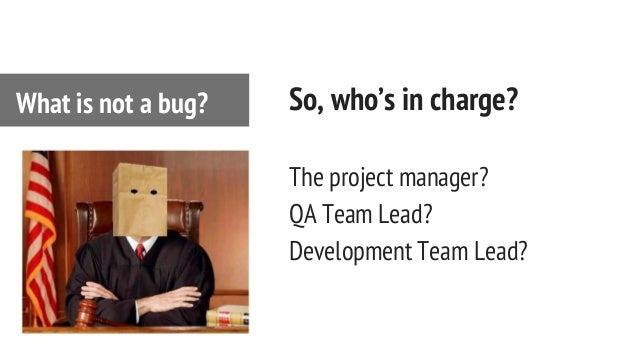 So, who's in charge? The project manager? QA Team Lead? Development Team Lead? What is not a bug?